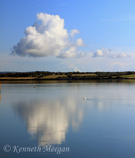 Bannow Bay Reflections