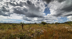 Brazil - Alto Paraso (Nailton Barbosa) Tags: brazil brasil de nikon bresil centro brasilien dos jardim cerrado alto brasile chapada veadeiros paraso brsil gois d800 oeste maytreia