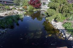 Pond (ibm4381) Tags: gardens centennial allen madison canonef1635mmf28liiusm