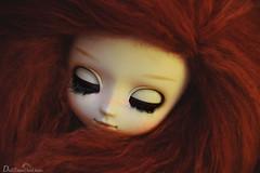 Alix (DidiTisseDesLiens (AB)) Tags: hair doll dolls meg pullip cheveux poupe poupes nikond5300 pullipmeg