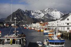 Henningsvr  30. mars (dese) Tags: mars mountains norway boats coast harbor harbour scandinavia lofoten noreg hamn nordland henningsvr btar vgan 2016 march30