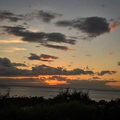 IMG_0421 (Ourisman Travel) Tags: hawaii maui wailea hotelwailea