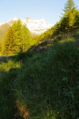 16-palu1 (Davide Podetti) Tags: parco val di dello pian peio stelvio pal valdisole