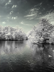 Dulwich Park (blackwoodse6) Tags: park uk blue trees england sky white london clouds canon ir outdoors pond bluesky infrared foilage southlondon southwark dulwich falsecolour londonpark southeastlondon dulwichpark infraredphotography 720nm londonboroughofsouthwark canong10