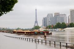 Paris sous les flots (Not-the-average-Joe) Tags: paris france mississippi eiffeltower floods overflow crue riverseine euro2016