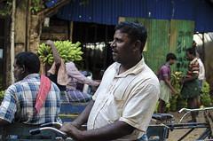 @ Parrys corner (Kals Pics) Tags: parrys chennai tamilnadu india life people fruits banana cwc roi chennaiweelendclickers rootsofindia streetlife singarachennai kalspics man smile expression men work fruitmarket