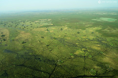 15-09-20 Ruta Okavango Botswana (61) R01 (Nikobo3) Tags: travel parque paisajes naturaleza color canon ngc delta unesco viajes botswana okavango vuelo twop frica vidasalvaje g7x omot deltadelokavango flickrtravelaward canong7x nikobo josgarcacobo todosloscomentarios