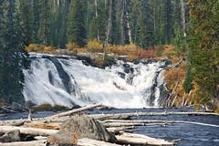 Lewis Falls (bhophotos) Tags: travel autumn trees usa nature water river landscape geotagged nationalpark nikon logs falls waterfalls yellowstonenationalpark yellowstone wyoming nikkor ynp lewisfalls d700 70200mmf28vrii