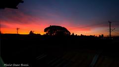 _DSC1359 (Mario C Bucci) Tags: vermelho crepusculo sidney zilah
