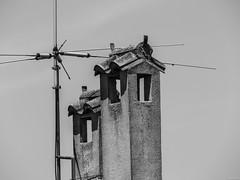 Seales de humo (Luicabe) Tags: ladrillo blancoynegro metal arquitectura exterior zoom cielo antena luis cemento tejado zamora cabello chimenea airelibre monocromtico yarat1 enazamorado luicabe
