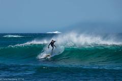 Surfing with Icebergs (Gene Herzberg) Tags: surfing iceberg newfoundland canada waves blue