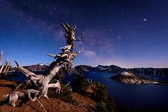Crater Lake and Stars-473 (whatdidyouexpect) Tags: night stars oregon craterlake astralphotography lake milkyway scenic water blue nikond750 sky naturephotography