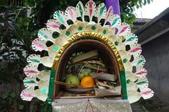 DSC00161 (Peripatete) Tags: family bali nature festival fruit prayer religion ceremony hindu ubud offerings galungan penjor