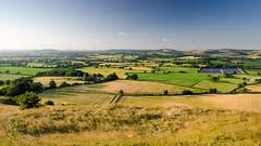 Blackmore Vale (Joe Dunckley) Tags: uk summer england nature field landscape evening farm hill farming meadow sunny farmland pasture dorset agriculture blackmorevale scarp hardycountry childokeford hambledonhill northdorset cranbornechase stourvalley