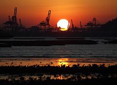 M5296886s (Marvinlee) Tags: sunset hongkong olympus ha nai pak e5 1122 50200