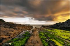 Izei (Caramad) Tags: sea seascape marina landscape mar agua rocks olas rocas cantabria castrourdiales marcantbrico elpocillodelosfrailes