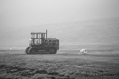 The Westfjords of Iceland (virtualwayfarer) Tags: iceland icelandic westfjords westernfjords fjor fjords europe roadtrip driving exploring canon canon6d dslr roadone road1 highway1 ringroad tractor old oldtractor ruin rusted field farm farming fjord water fog sheep bildudalur blackandwhite nordic june vikings landofsagas