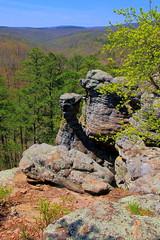 Along King Bluff Loop Trail, Pedestal Rocks Scenic Area - Northern Pope County, Arkansas (danjdavis) Tags: arkansas bluff rockformations geologicalformations popecounty kingsbluff kingsblufflooptrail pedetalrocksscenicarea