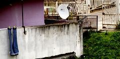 _DSC4217 (Parrasgo) Tags: urban streetart art blanco trash graffiti agua reflejo basura rubbish napoli fiore velas napoles escondido lavadoras pobreza secondigliano nascosto neveras camorra scampia gomorra