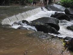 IMG_5427 (Gokul Chakrapani) Tags: waterfalls karnataka westernghats bolle charmadi