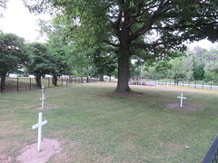 War of 1812 Cemetery, July 4 2016 (ianulimac) Tags: july 4 2016 warof1812 military niagara buffalo cheektowaga cemetery soldiers dead wounded casualties flags remembrance grave massgrave america britain canada barracks fighting war disease burial history andrewjackson ellicottcreek forgotten cannon gun monument memorial