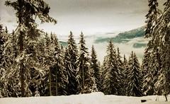 Combloux, lomography, 19 (Patrick.Raymond (2M views)) Tags: alpes haute savoie combloux argentique lomography xpro nikon neige montagne nikonflickraward beautifulphoto expressyourself