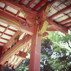 (filmprince) Tags: color 120 film june japan by rolleiflex fuji scanner slide velvia  100 fukuoka six developed f28 jun schneider kreuznach rvp  80mm 2016  28c rvp100 xenotar plustek opticfilm 20160610 10jun2016