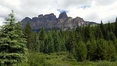 Northern Rockies (Patricia Henschen) Tags: banff banffnationalpark canada parkscanada parcs park mountains northern rockies rocky bowvalleyparkway castlemountain