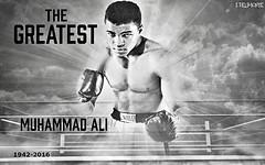 The Greatest: Muhammad Ali (shadrachdelmonte) Tags: muhammadali