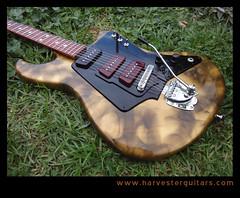 27quarter2 (Harvester Guitars) Tags: metal neck aluminum guitar guitars australia melbourne luthier harvester wandre