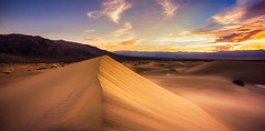 Golden (Eddie 11uisma) Tags: california southwest death landscapes sand desert dunes wells mesquite american valley eddie stovepipe lluisma