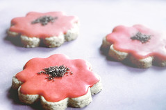lemon-poppy cookies (Der Himmel ber Bozen) Tags: red italy flower cookies breakfast mom recipe baking lemon nikon weekend saturday nora glaze poppy marthastewart wakeup manualfocus bozen motherday