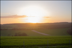 Dreamy (victor*f) Tags: uk sunset england sun holiday sussex spring blurred outoffocus fujifilm southdowns intothesun lackoffocus x100 halnaker halnakerhill