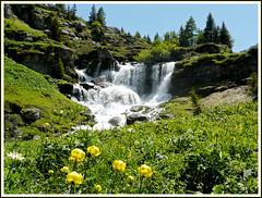 Cascade du Trainant (myvalleylil1) Tags: france montagne alpes cheval vacances waterfall stream  t torrent hautesavoie sixtfer