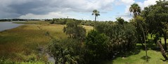 Crystal River Panorama (Memotions) Tags: park county people usa history river scenery state florida crystal estuary burial citrus patty prehistoric trade archeology mounds ceremonial indiginous 2013 ohearn kickham
