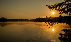 You can only come to the morning through the shadows. (Dan Haug) Tags: jrrtolkien xf35mmf14r kawartha ontario sunrise sun mist morning august 2013 explore explored