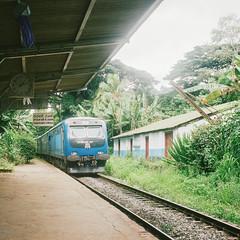 Railway Station (richardhwc) Tags: 120 6x6 film rolleiflex train mediumformat kodak railwaystation srilanka ceylon 35e planar carlzeiss portra400 75mmf35 coatingdegraded sarasaviuyana