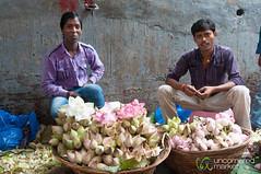 Dadar Flower Market, Piles of Lotus Flowers - Mumbai, India (uncorneredmarket) Tags: people india men maharashtra mumbai lotusflowers indianmen dadarflowermarket mumbaipeople dadarmarket