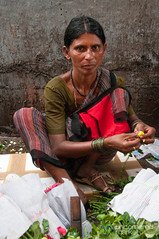 Rose Vendor at Dadar Flower Market - Mumbai, India (uncorneredmarket) Tags: people woman india maharashtra mumbai indianwoman dadarflowermarket mumbaipeople dadarmarket