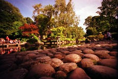japanese garden (jhottapeh) Tags: park holland london film lomo kensington 800 lcwide