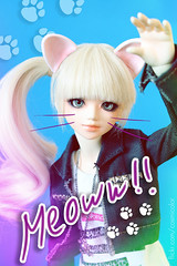=^.^= (-Sebastian Vargas --) Tags: chile cat ball kid mod doll meow bjd abjd mueca jointed unoa dollmore sist