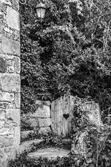 Si l'arbre cache ..., Bruniquel (ISO 31) Tags: door wood france village heart south coeur hood porte tarn et foret garonne forêt bois sud bruniquel tarnetgaronne