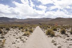 Sajama15 (Marisela Murcia) Tags: bolivia sajama chulpas nationalparksajamaaltiplanobolivianoculturaprehispánicacarangas chullpaspolicromas