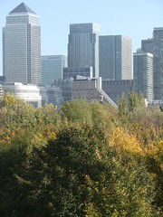 Canary Wharf, View from Stave Hill, Rotherhithe, London SE16 @ 13 November 2013 (Part 2 of 2) (Kam.Hong Leung) Tags: park wood city autumn winter light summer brown sun kewgardens plant colour macro building tree green london tower fall nature ecology true yellow kew fauna skyscraper woodland garden insect gold golden leaf spring flora education cityscape wildlife conservation science environment botany horticulture rotherhithe southwark canadawater biodiversity surreydocks dockland stavehill ecologypark btcv pollinator tcv southwarkcouncil russiadockwoodland kamhongleung stavehillecologypark trustforurbanecology leungkamhong beatriceleung btcvcarbonarmy friendsofkew theconservationvolunteers 'wintertrees' 'cityoflondon' 'canarywharf' 'isleofdog' 'londondocklands