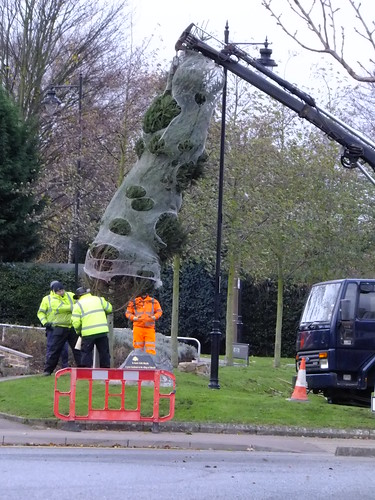 Tree erection