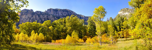 Oak Creek Canyon Autumn