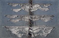 Velamen de la Fragata Libertad (Carhove) Tags: sea espaa marina mar andaluca spain barco cdiz velas nao banderas texturas ejercito fragata mastil texturizado impressedbeauty oltusfotos mygearandme infinitexposure