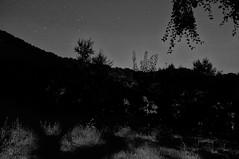 #76 (UBU ♛) Tags: blancoynegro blackwhite noiretblanc biancoenero blupolvere ©ubu blutristezza unamusicaintesta landscapeinblues bluubu luciombreepiccolicristalli