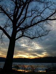 The shore of the Hudson, near Poughkeepsie. (ftoomschb) Tags: tree river dusk sony poughkeepsie valley hudson alpha dslr hdr luminance a700
