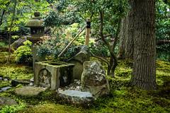 Japanse Tuin Clingendael 2014-02198 (Arie van Tilborg) Tags: japanesegarden denhaag thehague clingendael japansetuin clingendaelestate landgoedclingendael